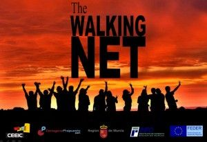 walking net